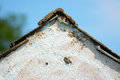 Installment house roof and wall detail with blue sky Royalty Free Stock Photography