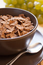 Integral cereal flakes for breakfast Royalty Free Stock Image