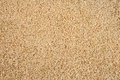 Integral uncooked brown rice texture Royalty Free Stock Image