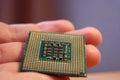 Intel CPU on hand,Pentium 4 Royalty Free Stock Photo