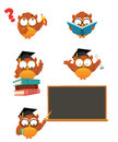 Intelligent owl set vector illustration of cute little owls Stock Images