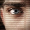 Intent look concept with an eye looking through a lattice of a shadow Royalty Free Stock Image