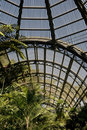 Interior of Botanical Gardens Royalty Free Stock Images