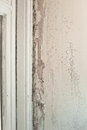 Interior decay mould and wood rot on a window frame and wall Royalty Free Stock Image