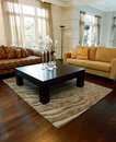 Interior design - Living area Royalty Free Stock Photos