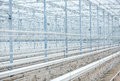 Interior of an Empty Industrial Greenhouse Royalty Free Stock Photo