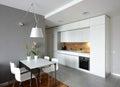 Interior of modern kitchen. Royalty Free Stock Photo
