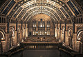 Interior of Natural History Museum, London. Stock Images