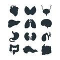 Internal organs silhouette vector illustration.