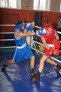 International Junior championship Boxing in Gomel (Belarus). Stock Images