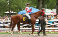 Internationally acclaimed jockey lanfranco dettori saratoga springs ny jul thoroughbred parades in the walking ring aboard luck of Royalty Free Stock Photos