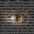 Internety spying concept closeup of human eye with digital binary code of internet Stock Images