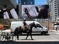 Intersection in Toronto with large street poster and mounted police man Royalty Free Stock Photo