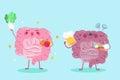Intestine with health concept