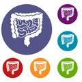 Intestines icons set
