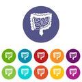 Intestines set icons