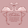 Invitation card with flamingos elegant Stock Images