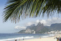 Ipanema beach rio de janeiro brazil palm frond view with above two brothers mountain Stock Image