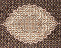 Iranian carpets rugs nice design Royalty Free Stock Photo