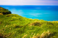 Ireland grass and ocean ledge along coast in Royalty Free Stock Image