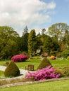 Ireland killarney national park gardens of the muckross house Royalty Free Stock Image