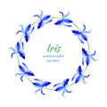 Iris flower hand drawn watercolor vector painting illustration, floral round frame, blue decorative herbal wreath for