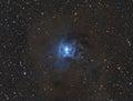 Iris nebula Lizenzfreies Stockbild