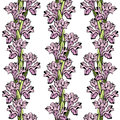 Iris seamless ornament stylish background wit flowers Stock Images