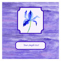 Iris violet flower watercolor illustration on white background, decorative paining texture, Hand drawn vector