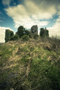 Irish castle ancient medieval carrigogunnell limerick county ireland Royalty Free Stock Photography