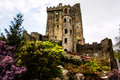 Irish castle of blarney famous for the stone of eloquence ire ireland europa Royalty Free Stock Photos