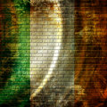 Irish flag Royalty Free Stock Photo