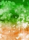 Irský vlajka