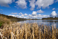 Irish lake in Co. Clare Royalty Free Stock Image