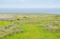 Irish landscape typical in aran islands republic of ireland Stock Photography