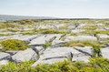 Irish landscape typical in aran islands republic of ireland Royalty Free Stock Photography