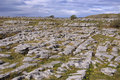 Irish limestone landscape Royalty Free Stock Photography