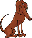 Irish setter dog cartoon illustration Stock Images