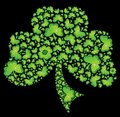 Irish Shamrock Clover 2 Celtic Vector Royalty Free Stock Photography
