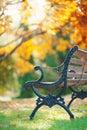 Iron bench in the garden