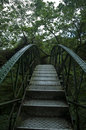 Iron bridge in jungle Stock Images