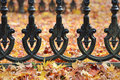 Iron fence and autumn leaves detail on ground Royalty Free Stock Images