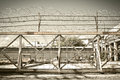 Iron fence & barbed wire Royalty Free Stock Photo
