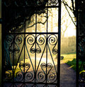 Picture : Iron fence   street