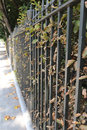 Iron railings bordering a london garden square in autumn park Stock Photography
