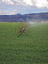 Irrigated Field Royalty Free Stock Photo