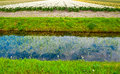 Irrigation Canal Royalty Free Stock Photos