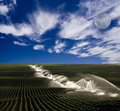 Irrigation on farm Royalty Free Stock Photography