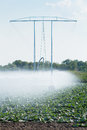 Irrigation pivot watering on vegetable field Stock Image