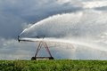 Irrigation pivot on the wheat field Royalty Free Stock Photo